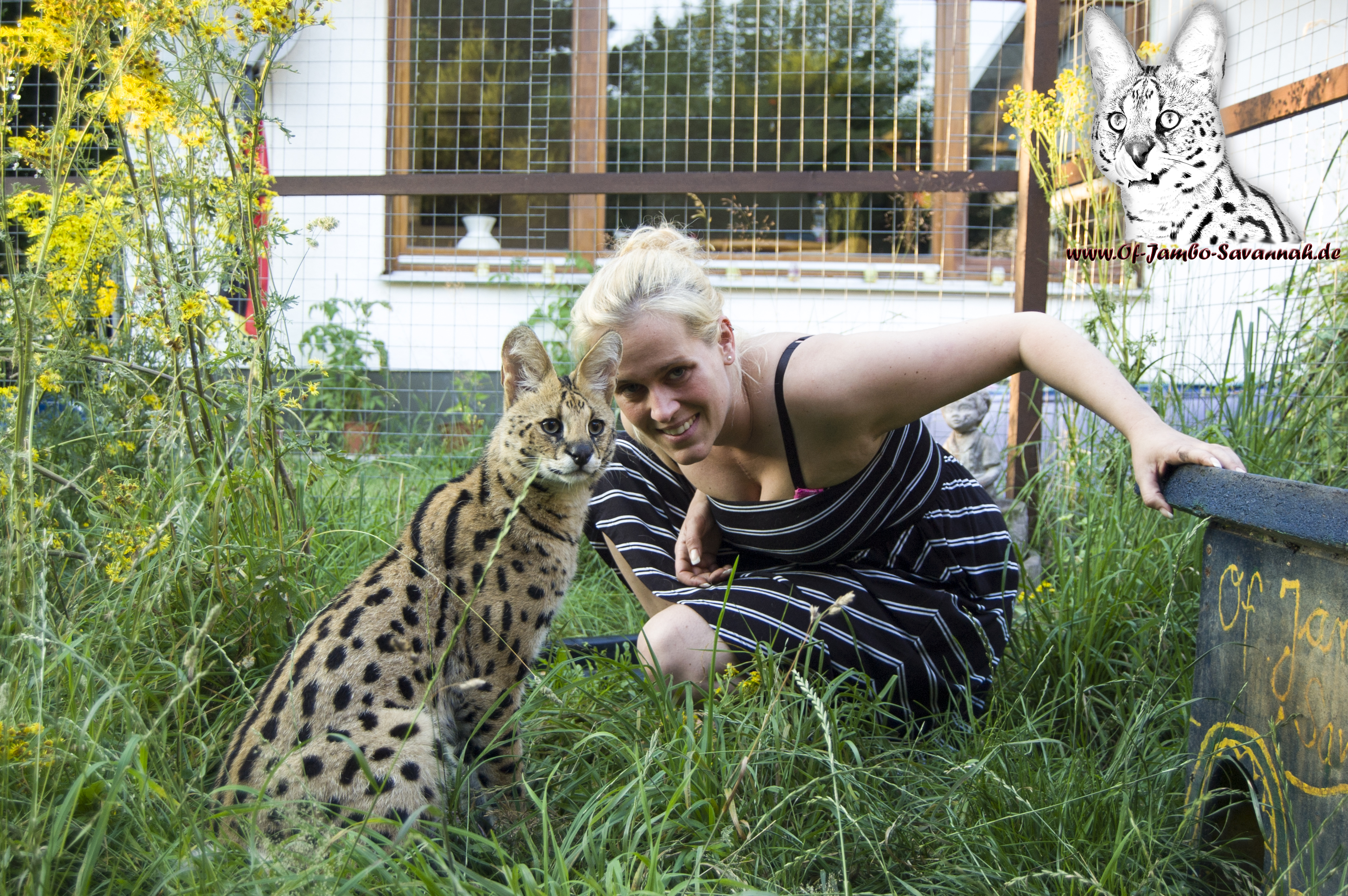 "Savannah Cat Breeder Angela Hönig (Germany) with her Serval ""Thor"""